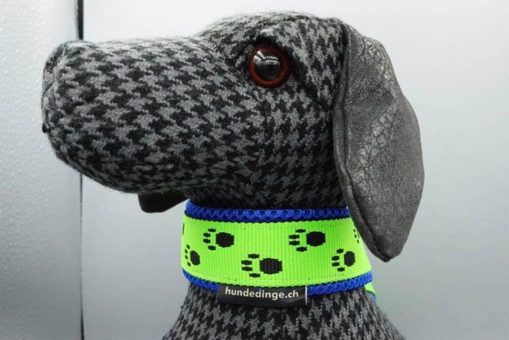 Neongrünes Halsband mit Pfötchen