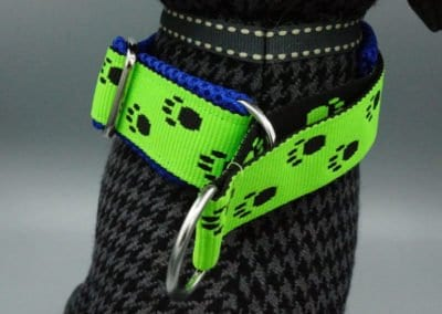 Neongrünes Halsband mit Pfötchen und Zugstopp