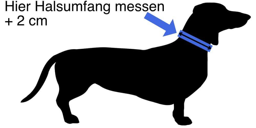 Halsband Messanleitung