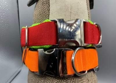Halsband Metallschnalle