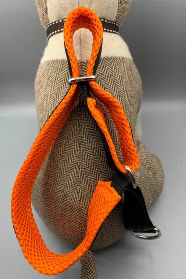 Halsband Schwarz-Neonorange