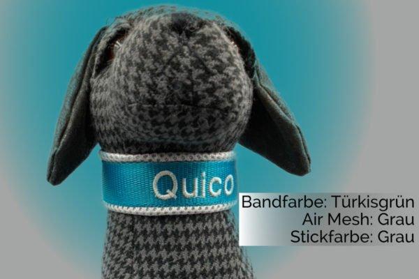 Hundehalsband Türkis Grau