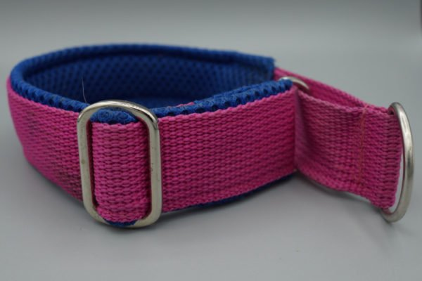Beschriftetes Hundehalsband in der Farbe Fuchsia