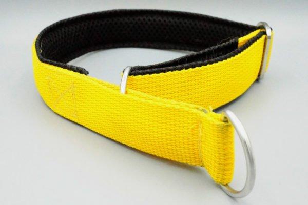 Beschriftetes Hundehalsband in Gelb Schwarz