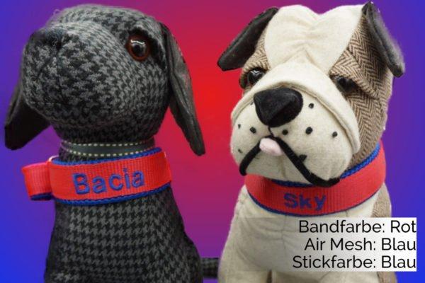 Hundehalsband Rot-Blau