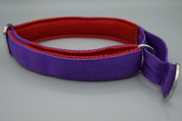 Hundehalsband Violett-Rot
