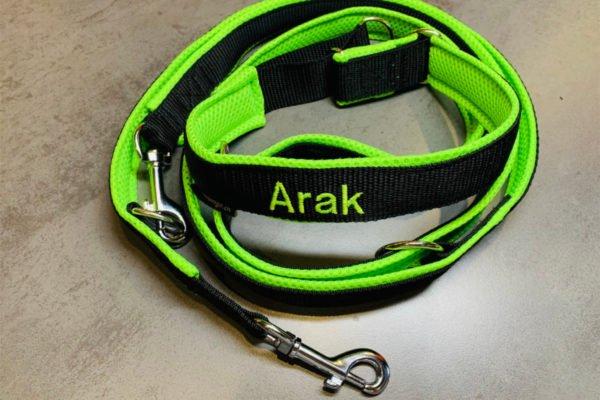 Bestickte Hundeleine schwarz-neongrün