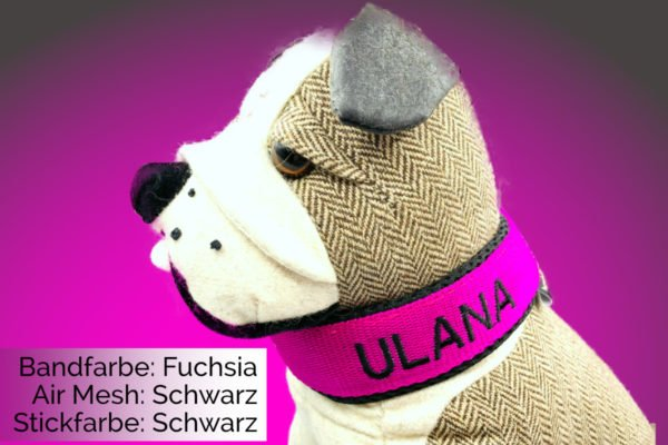 Halsband Fuchsia-Schwarz