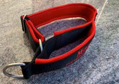 Halsband Handschlaufe Mani 4