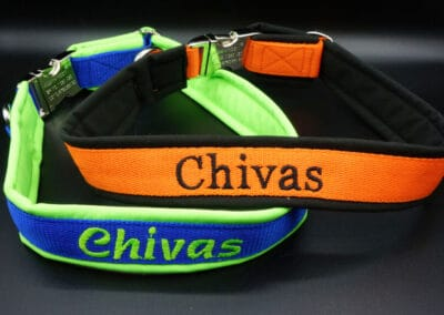 Halsband Chivas