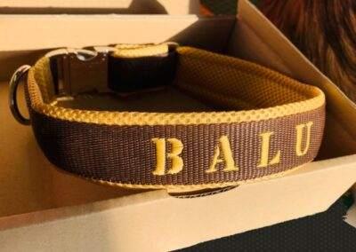 Balu Band