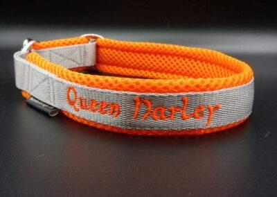 Halsband Harley