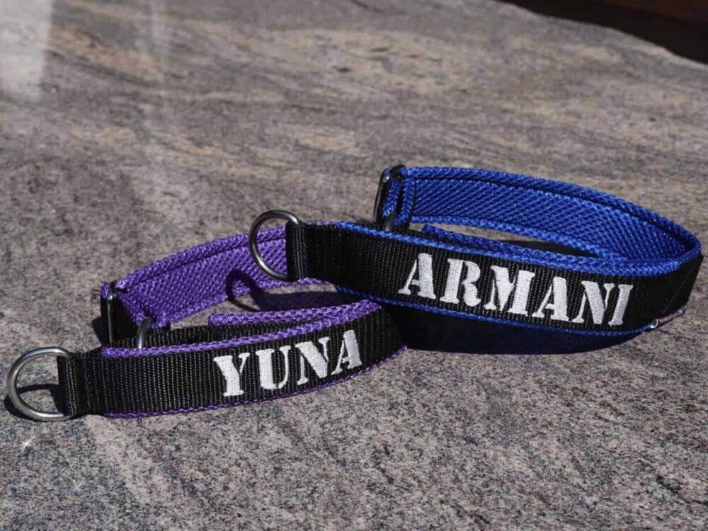 halsband mit handschlaufe violett blau