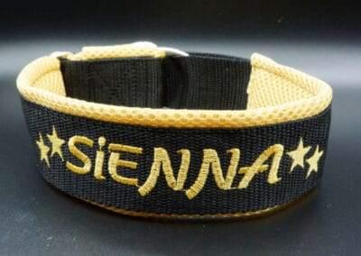Hundehalsband aus schwarzen Gurtband, goldig bestickt mit Sienna und goldigem Airmesh als Polster