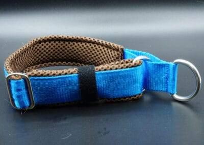 Halsband Dunkelbraun Blau hinten