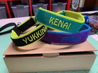 Bestickte Halsbänder in verschieden Farben