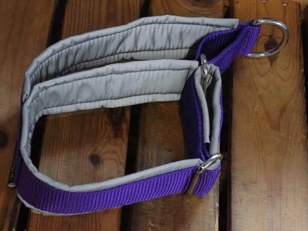 Stark reflektierendes Softshell Hundehalsband mit Handschlaufe